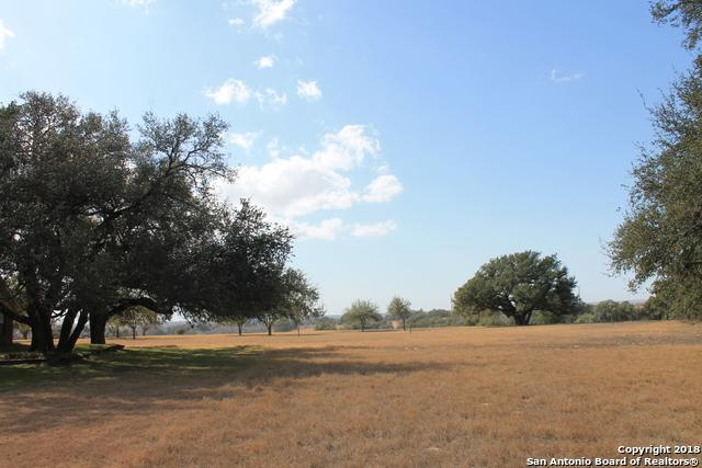 57 Johns Ln, Floresville, TX 78114 (MLS #1295325) :: Ultimate Real Estate Services