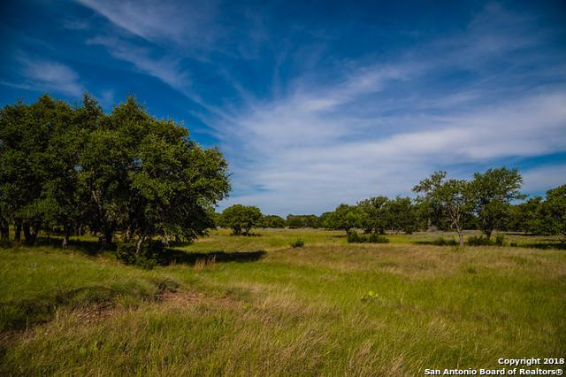 000 Highway 290, Harper, TX 78631 (MLS #1295533) :: Alexis Weigand Real Estate Group