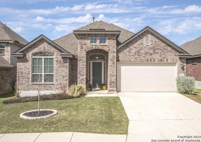27022 Oleander Chase, Boerne, TX 78015 (MLS #1295719) :: The Castillo Group