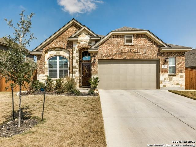 12151 Hideaway Creek, San Antonio, TX 78254 (MLS #1295728) :: The Castillo Group