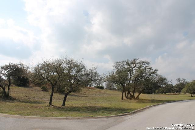 2530 George Pass, Canyon Lake, TX 78133 (MLS #1295757) :: Erin Caraway Group