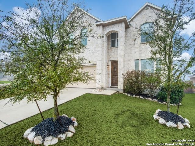 25611 Weigela, San Antonio, TX 78261 (MLS #1295833) :: The Castillo Group
