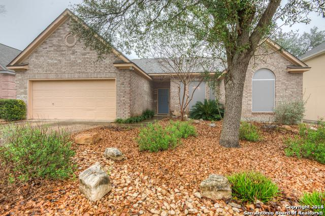 13550 Chappel View, San Antonio, TX 78249 (MLS #1296067) :: Exquisite Properties, LLC