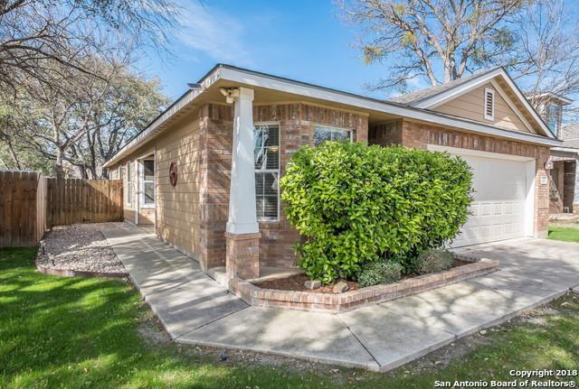 10811 Gemsbuck Lodge, San Antonio, TX 78245 (MLS #1296133) :: The Castillo Group