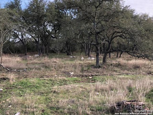 LOT 1491 Via Principale, New Braunfels, TX 78132 (MLS #1296360) :: Exquisite Properties, LLC