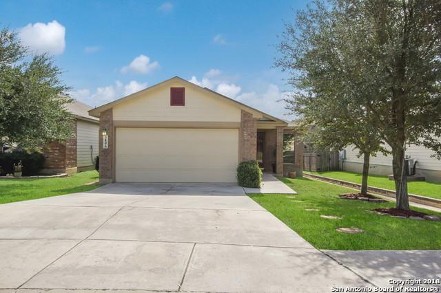 3806 Relampago, San Antonio, TX 78223 (MLS #1296642) :: The Castillo Group