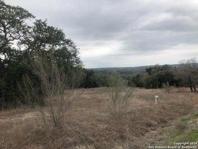 1011 (LOT 23) Las Brisas Dr, Canyon Lake, TX 78133 (MLS #1296665) :: Magnolia Realty