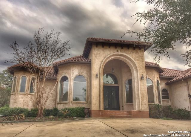 1036 Long Meadows, Spring Branch, TX 78070 (MLS #1296751) :: The Castillo Group