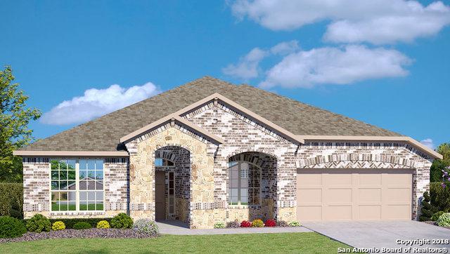 447 Escarpment Oak, New Braunfels, TX 78130 (MLS #1296886) :: Magnolia Realty