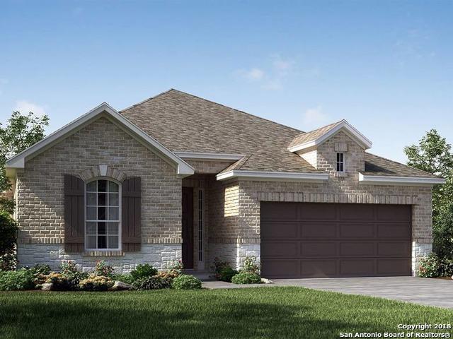10539 Tranquille Place, San Antonio, TX 78245 (MLS #1296909) :: Exquisite Properties, LLC