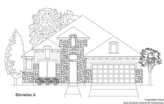 24820 Marcia View, San Antonio, TX 78261 (MLS #1297273) :: Exquisite Properties, LLC