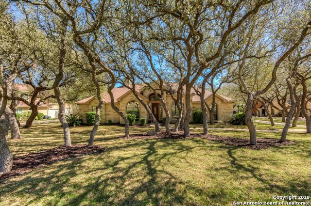 810 Copper Rim, Spring Branch, TX 78070 (MLS #1297290) :: The Castillo Group