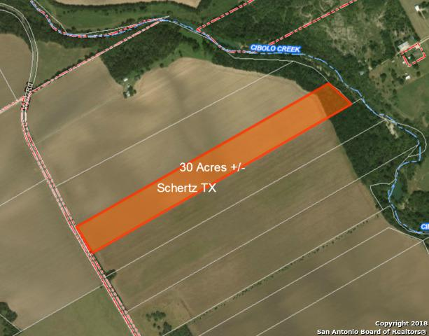 30 ACRES Weir Rd, Schertz, TX 78108 (MLS #1297309) :: The Castillo Group