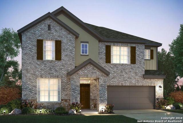 6230 Alta Puerta, San Antonio, TX 78247 (MLS #1297463) :: The Castillo Group