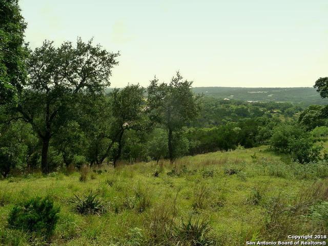 2432 Bella Vista, Canyon Lake, TX 78133 (MLS #1297467) :: The Castillo Group