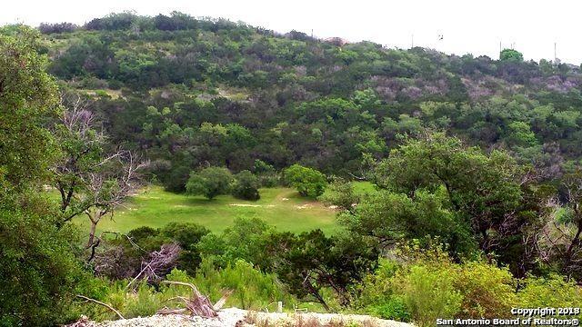 18034 Granite Hills Dr, San Antonio, TX 78255 (MLS #1297569) :: Erin Caraway Group