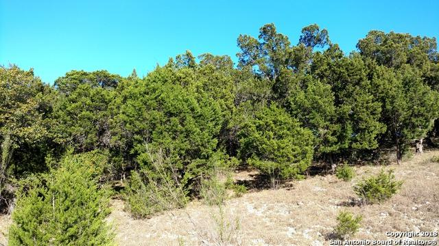 246 Dry Hollow, Spring Branch, TX 78070 (MLS #1297587) :: The Castillo Group