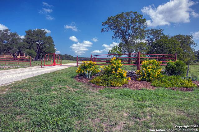 1160 Imhoff Ln, New Braunfels, TX 78132 (MLS #1297685) :: Alexis Weigand Real Estate Group