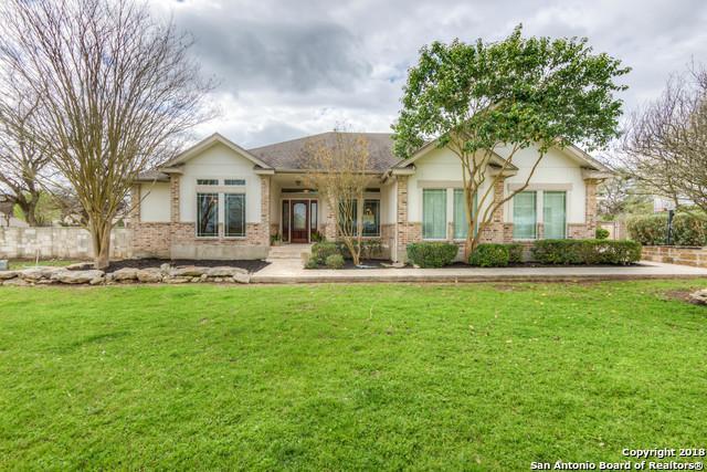 260 Steeplebrook, Spring Branch, TX 78070 (MLS #1297765) :: The Castillo Group