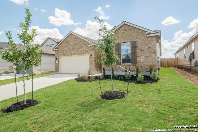 2049 Oedipus, San Antonio, TX 78245 (MLS #1297821) :: The Castillo Group