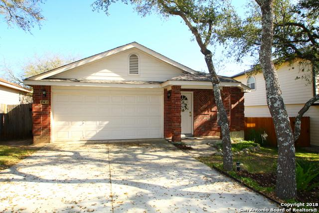 1210 Lion King, San Antonio, TX 78251 (MLS #1297884) :: Exquisite Properties, LLC