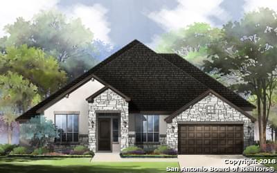 587 Cloiser Road, New Braunfels, TX 78132 (MLS #1297891) :: Exquisite Properties, LLC