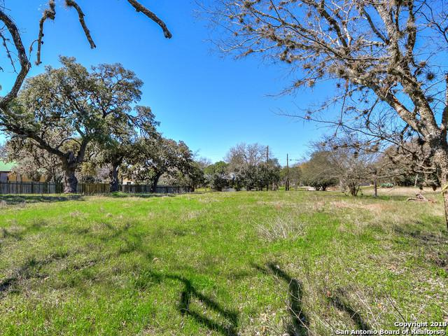 220 S Plant Ave, Boerne, TX 78006 (MLS #1298195) :: The Castillo Group