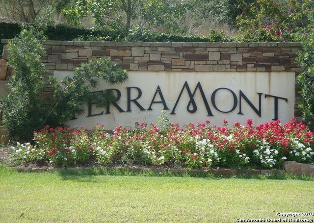 19727 Terra Mont, San Antonio, TX 78255 (MLS #1298303) :: Magnolia Realty