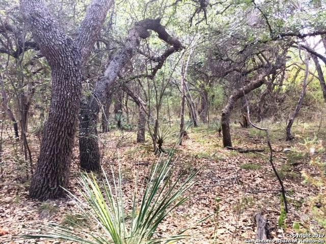 TBD Hillside, Bandera, TX 78003 (MLS #1298595) :: ForSaleSanAntonioHomes.com