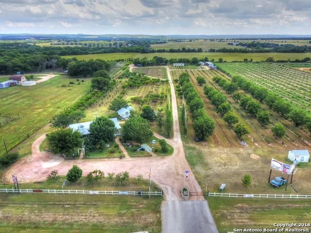 10091 E Us Highway 290, Fredericksburg, TX 78624 (MLS #1298644) :: The Castillo Group