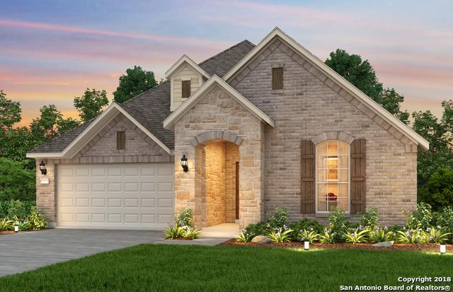 13907 Thera Isle, San Antonio, TX 78245 (MLS #1298693) :: The Castillo Group