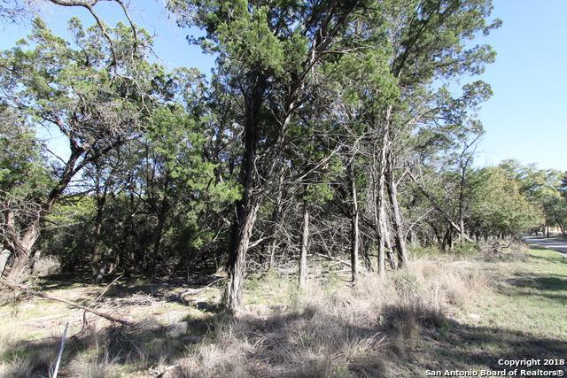 26818 Rockwall Pkwy, New Braunfels, TX 78132 (MLS #1298798) :: Exquisite Properties, LLC