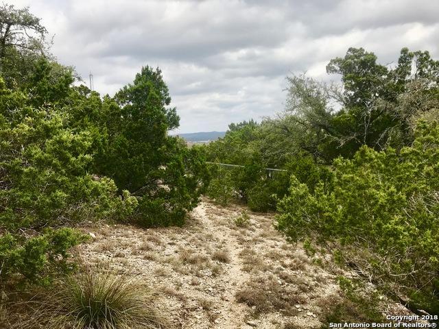 507 Slumber Pass, San Antonio, TX 78260 (MLS #1298923) :: The Castillo Group