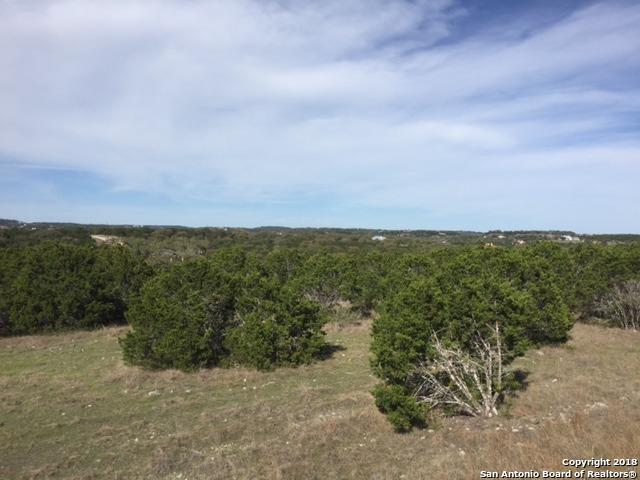 119 (LOT 1457) Bindweed, Spring Branch, TX 78070 (MLS #1299195) :: The Castillo Group
