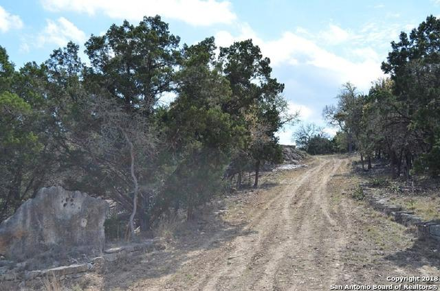 LOT 8 Gallagher Dr, Canyon Lake, TX 78133 (MLS #1299265) :: Magnolia Realty