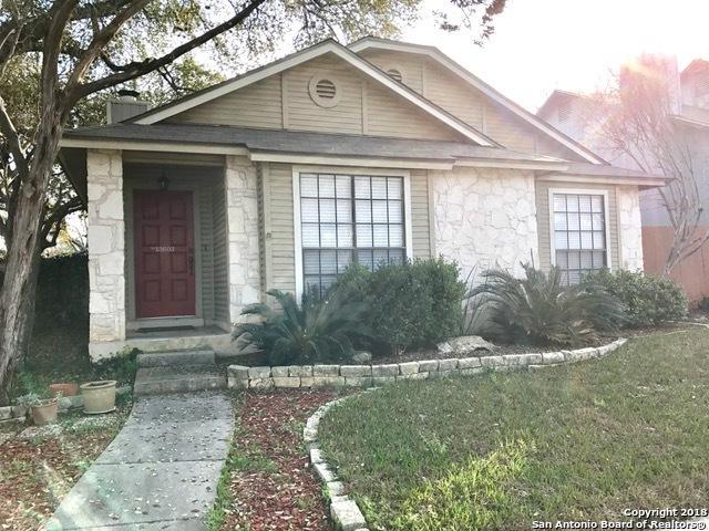 13603 Chapel Oaks, San Antonio, TX 78231 (MLS #1299347) :: The Castillo Group