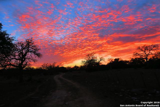 515 Flach Ranch Road E, Comfort, TX 78013 (MLS #1299613) :: Keller Williams City View