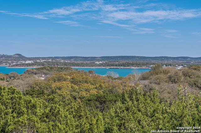 872 Missile Dr, Canyon Lake, TX 78133 (MLS #1299681) :: Neal & Neal Team