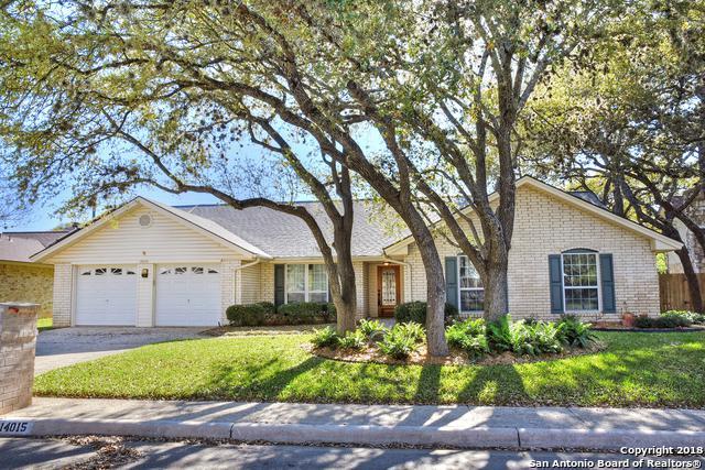 14015 Cluster Oak, San Antonio, TX 78231 (MLS #1299764) :: Exquisite Properties, LLC