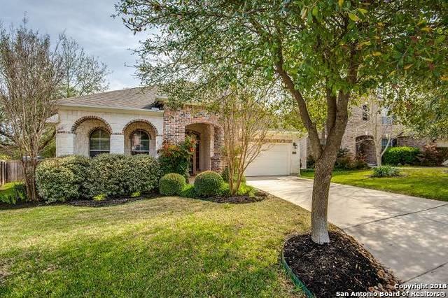 122 Aster Trail, San Antonio, TX 78256 (MLS #1299782) :: Carolina Garcia Real Estate Group
