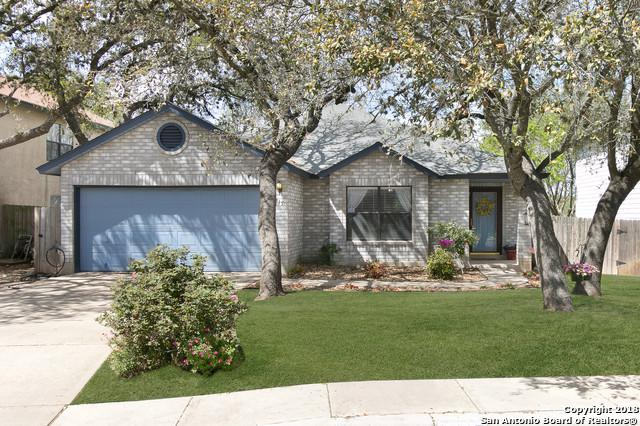 9715 Diamond Cliff Dr, Helotes, TX 78023 (MLS #1299923) :: Neal & Neal Team