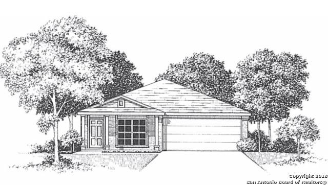 871 Pumpkin Rdg, New Braunfels, TX 78130 (MLS #1300052) :: NewHomePrograms.com LLC