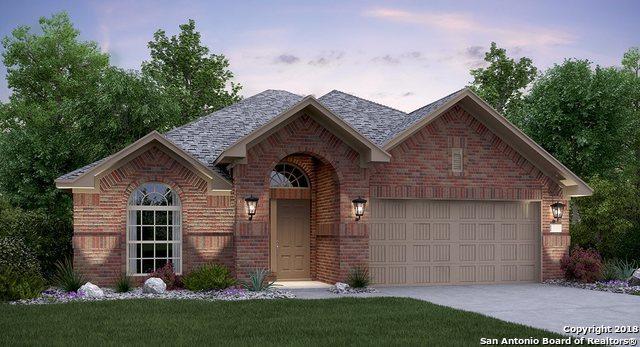 2050 Carter Lane, New Braunfels, TX 78130 (MLS #1301783) :: Exquisite Properties, LLC