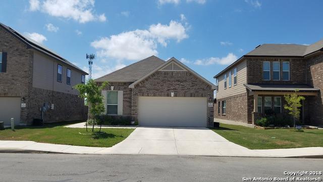 11630 Welch Hallow, San Antonio, TX 78254 (MLS #1301969) :: Exquisite Properties, LLC