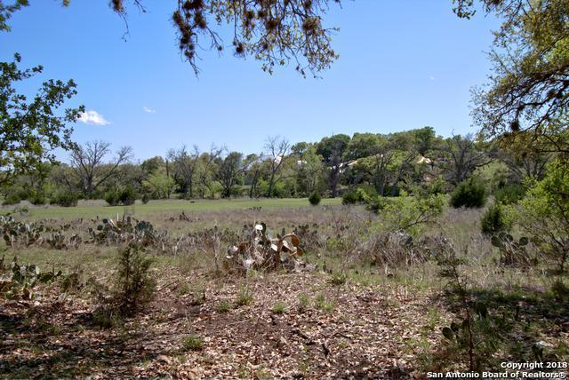 521 Rittimann Rd, Spring Branch, TX 78070 (MLS #1302326) :: Exquisite Properties, LLC