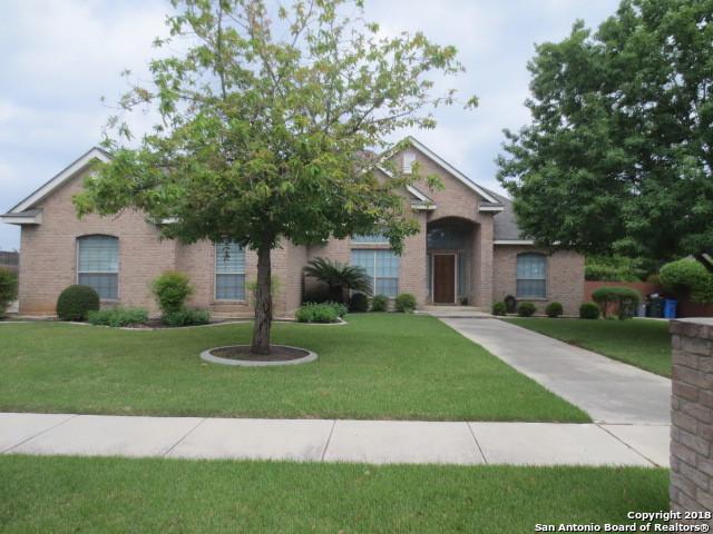 124 Alexandria, La Vernia, TX 78121 (MLS #1302378) :: Magnolia Realty
