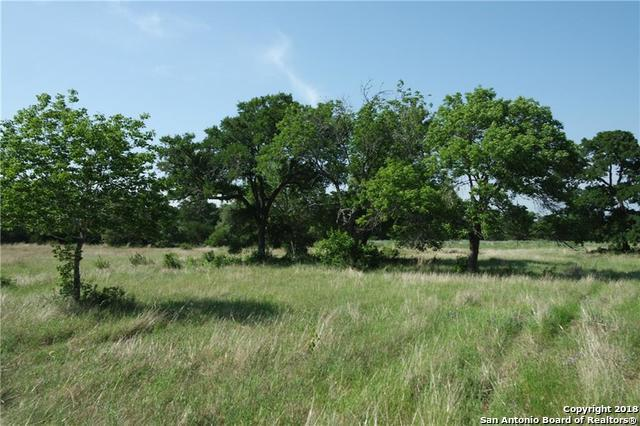 4570 Bell Springs Rd, Dripping Springs, TX 78620 (MLS #1302398) :: NewHomePrograms.com LLC