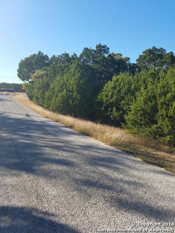 1221 Clearcreek Dr, Canyon Lake, TX 78133 (MLS #1302910) :: Magnolia Realty