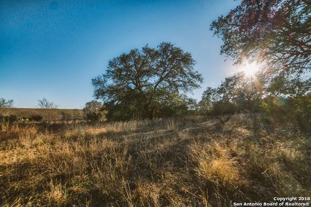 0 Cr 121 & Cr 124, Beeville, TX 78102 (MLS #1303128) :: Tom White Group