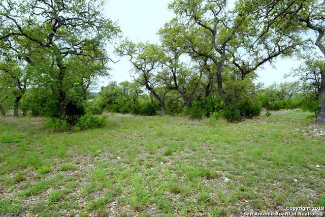 1065 Las Brisas Dr, Canyon Lake, TX 78133 (MLS #1303157) :: Magnolia Realty